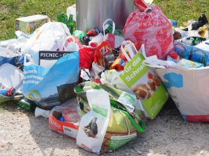 New EU-funded project aims to improve urban waste management
