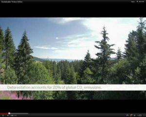 Sustainable Timber Action video now available online