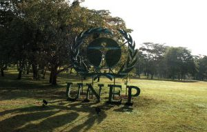 UNEP publishes indicators to measure sustainable production and consumption progress
